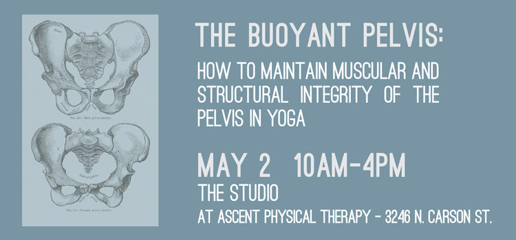 The Buoyant Pelvis – May 2nd