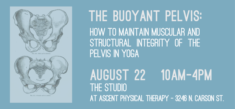 Back By Popular Demand – The Buoyant Pelvis – August 22nd