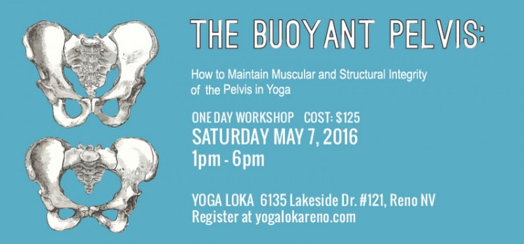 The Buoyant Pelvis at Yoga Loka in Reno